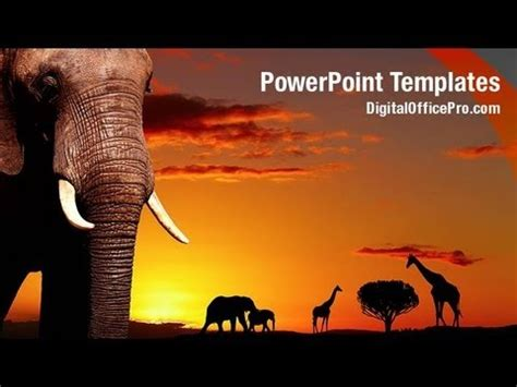 african wild animals powerpoint template backgrounds
