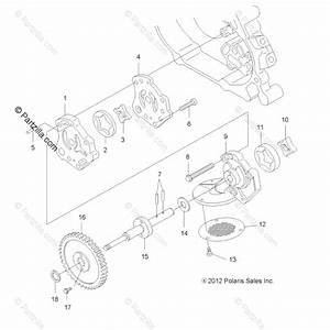 Polaris Atv 2013 Oem Parts Diagram For Engine  Oil Pump