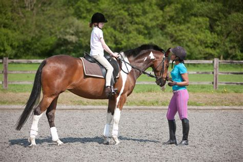 riding young horseback lessons instructor child children horse horses ride lesson boys equestrian take woman read