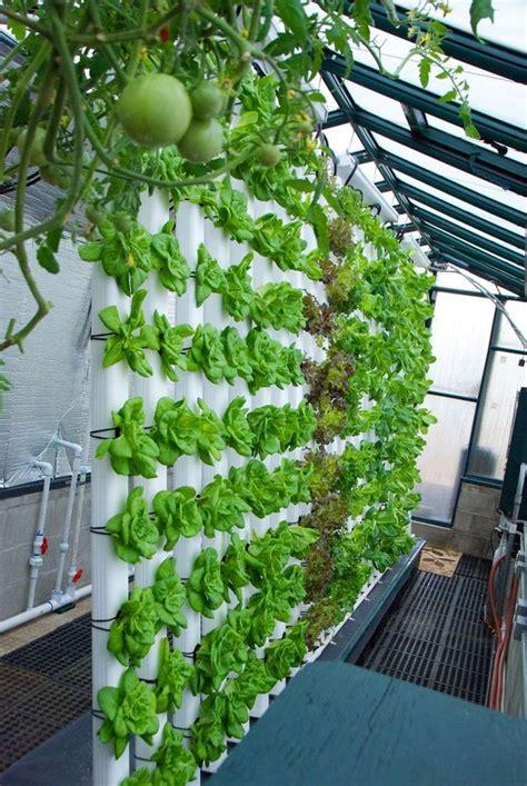 Hydroponic Gardening by 25 Easy Hydroponic Garden Ideas For Alternative
