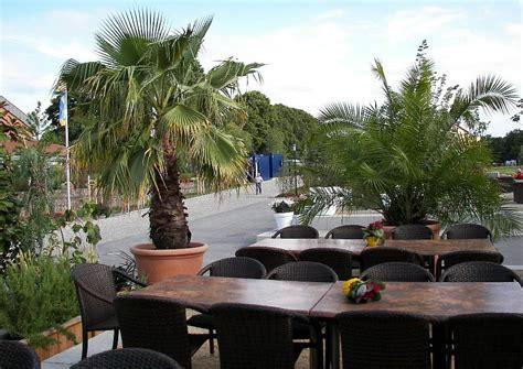 gestaltungsbeispiel mediterrane kuebelpflanzen palmen terrasse