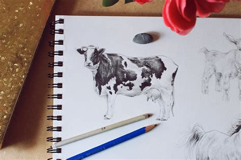 draw cows pigs realistically
