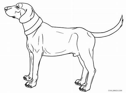 Coloring Dog Pages Schnauzer Realistic Dachshund Drawing