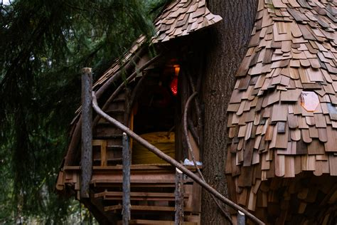 Check Out This Honeycomb Treehouse In Woodinville