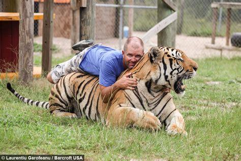 That's Grrrrrreat! Big Cat Enthusiast Wrestles With Tigers
