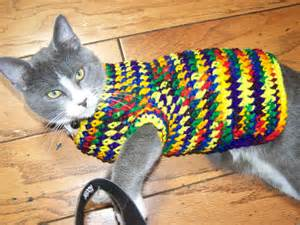 sweater for cat crocheted sweater for small puppy or cat