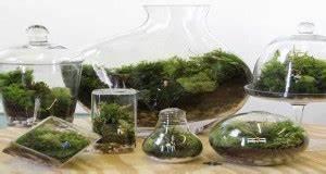 mur vegetal de plantes en pot pour faire une separation With quelles plantes pour jardin zen 3 comment decorer son interieur avec des plantes article