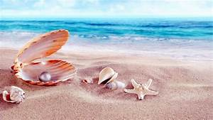 Sea Shells With Beads Sandy Beach Hd Wallpapers 1920x1200 ...