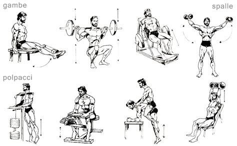esercizi polpacci a casa allenamento con i pesi la medicina pi 249 potente mondo