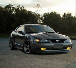 Pin by Ray Wilkins on Mustangs | Sn95 mustang, Mustang, Cool cars