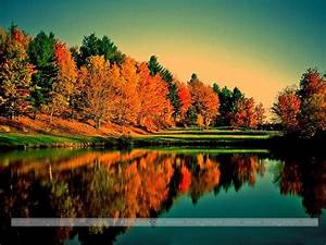 Pin Savanna-sunset-autumn-background-backgrounds-sunsets ...