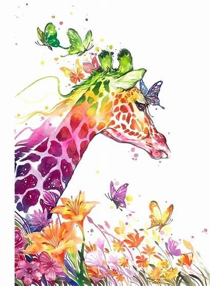 Giraffe Watercolor Redbubble Rainbow