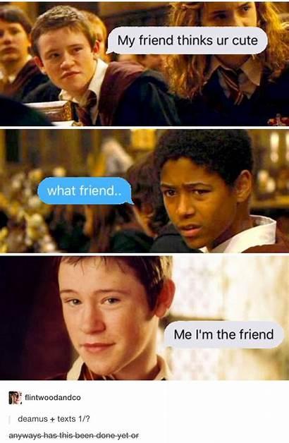 Potter Harry Dean Seamus Thomas Memes Marauders
