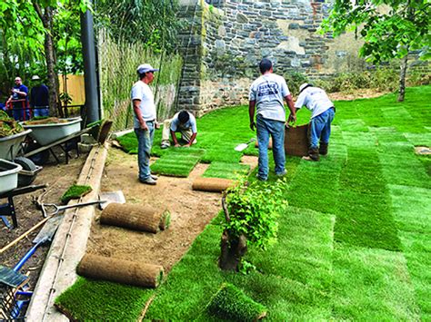 best time to re sod best practices for new lawns whether you re using seed or sod serpico landscaping