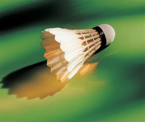 arena badminton