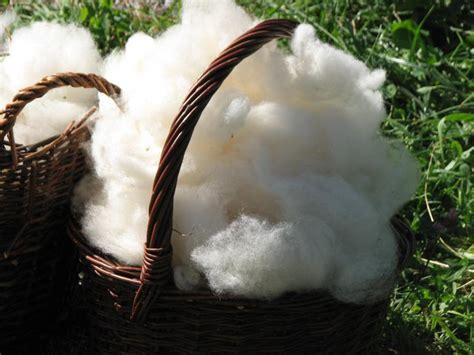 Daemmstoff Aus Schafwolle by Gewaschene Schafwolle