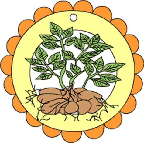 kartoffel spezial im kidswebde