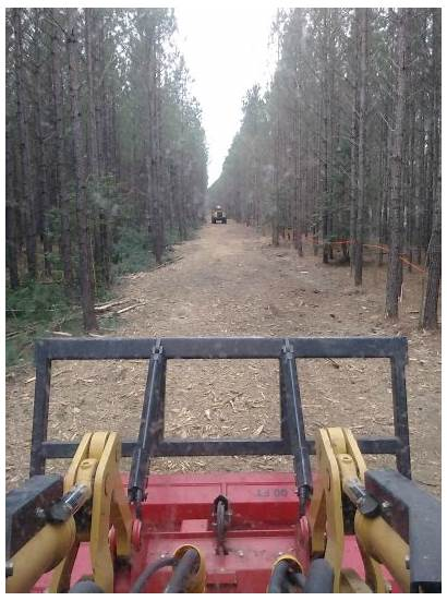 Clearing Trail Atv Hunting Horse Shooting Mulching