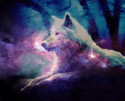 Wolf Galaxy Wallpapers Wallpapersafari Backgrounds Hipster Wolfs