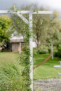 Garten Im September : mein garten im september pomponetti ~ Watch28wear.com Haus und Dekorationen