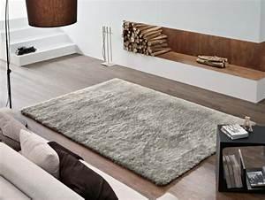 tapis shaggy dans le salon un accessoire moderne et elegant With tapis salon gris clair