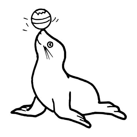 seal clipart black and white seal clip black and white clipart panda free