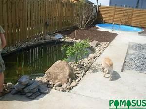 Kleiner Pool Für Garten : pomosus garten und landschaftsbau kleiner garten mit pool und teich ~ Sanjose-hotels-ca.com Haus und Dekorationen