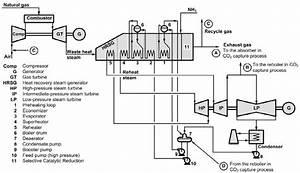 Tc U2019s Natural Gas
