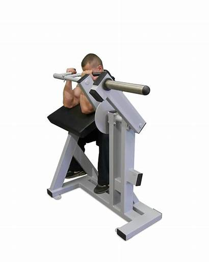 Equipment Gym Fitness Machine Loaded Plate Biceps