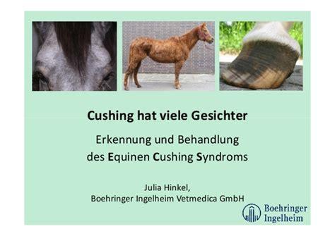 ecs pferdehalter vortrag november