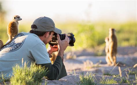 pictures showing  nature photographers