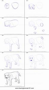 How To Draw A Dog Printable Step By Step Drawing Sheet