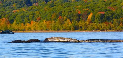 Lake Wallenpaupack, Hawley Pennsylvania | Fall trip to the ...