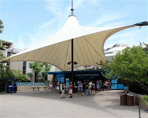 new york aquarium coney island aquarium