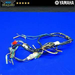 98 Yamaha Blaster 200 Wire Harness Electrical Wiring