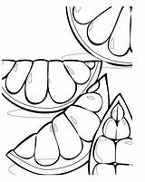 Grapefruit Pages Coloring Tim Topsy Fruit Colouring Template Cliparts Clip Clipart Citrus Games Library Yoshi Searches Recent Grapes Favorites Sun sketch template