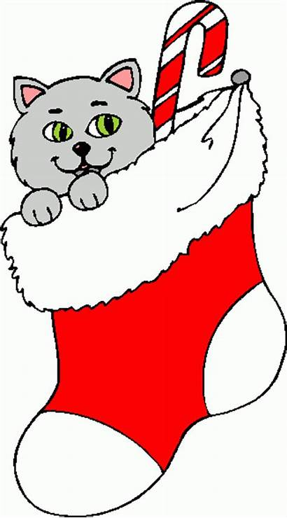 Stocking Clipart Christmas Clip Cat Stockings Library