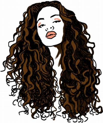 Wig Curly Brown Clipart Lace Pikpng