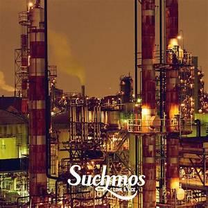 Vol.106 東京はゾンビばっかりでうんざりだ。『STAY TUNE / Suchmos』 - Past Orange