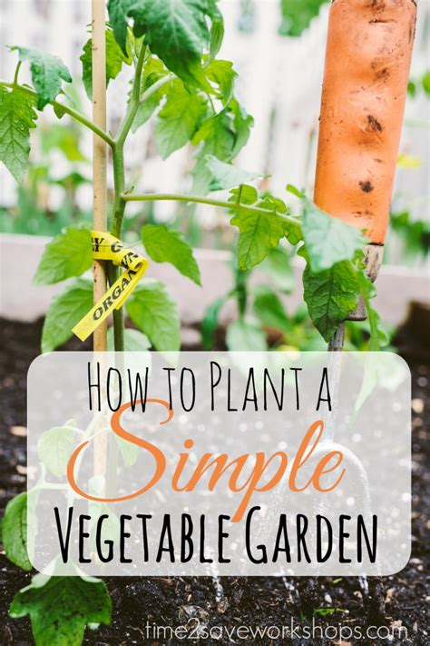 How To Plant A Vegetable Garden In Your Backyard by Sweet Simplicity How To Plant A Simple Vegetable Garden