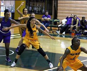 Women's basketball on winning streak; Ruffo earns ...