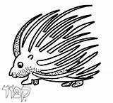Porcupine Coloring Pages Tots Cartoon Cliparts Torah Clipart Getcoloringpages Torahtots 2000 Inc sketch template