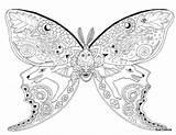 Coloring Moth Luna Google Butterfly Adults Animal Unique Mandalas Mandala Vk завтра цветы абстракция sketch template