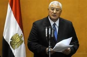 Egypt's interim president sworn in - NY Daily News