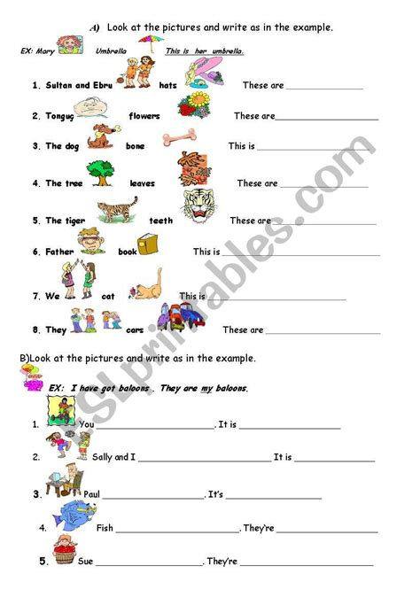 possessive adjectives esl worksheet by ebrucimen