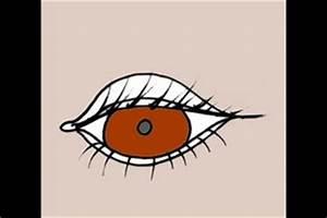 Grüne Augen Bedeutung : schminktipps f r braun gr ne augen ~ Frokenaadalensverden.com Haus und Dekorationen