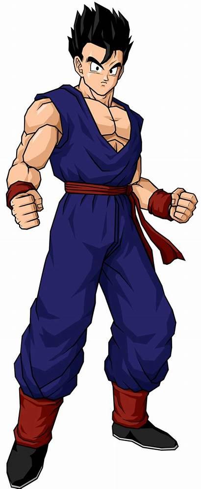 Gohan Son Dragon Ball Adult Base Ssj