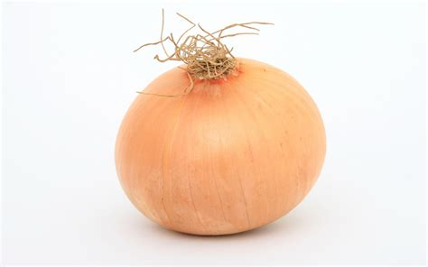 onion hd wallpapers background images wallpaper abyss