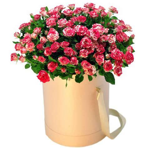 Krūmu rozes cepures kārbā. Ziedi kastē ar bezmaksas ...