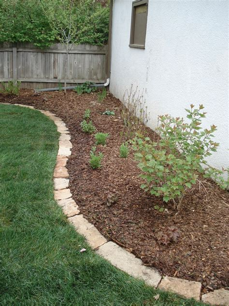 beds and borders landscape design photo tutorials beds and borders landscape design